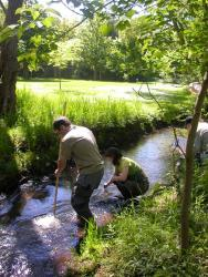 Stream Search June 2004 [Click here to view full size picture]